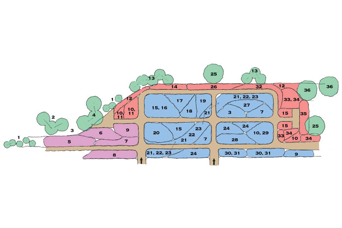 Carex map