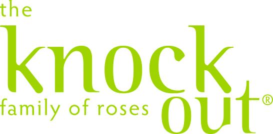 ko logo green